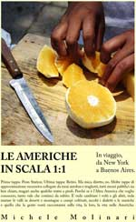 Le Americhe in Scala 1:1- Michele Molinari