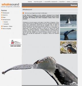 Whale Sound - Viaggio ascoltando le balene
