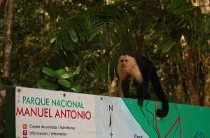 Costarica > Racconto di Viaggio Fiammetta