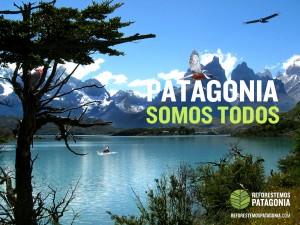 Reforestemos Patagonia.